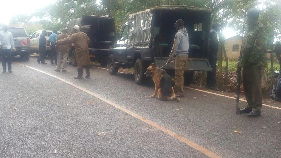Blow by blow account of the mysterious one-man attack at DP Ruto's home