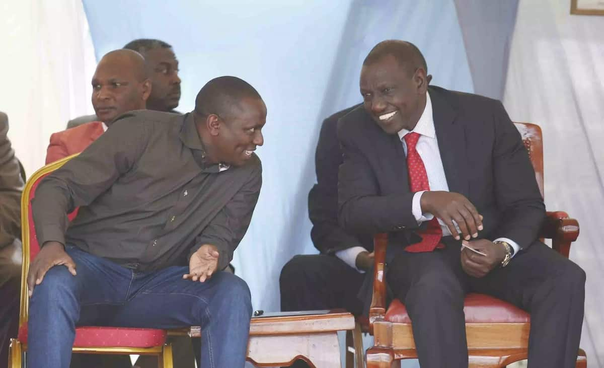 We will continue to support you without any apologies - Jubilee MP to Ruto