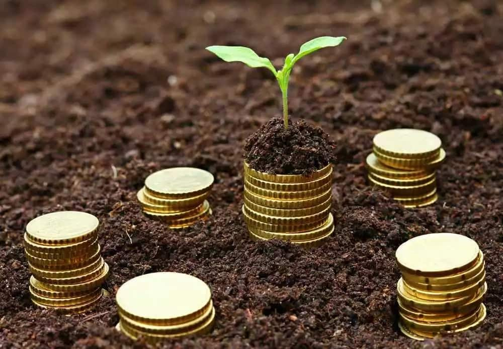 Comprehensive List of Microfinance Institutions in Kenya for Small Loans