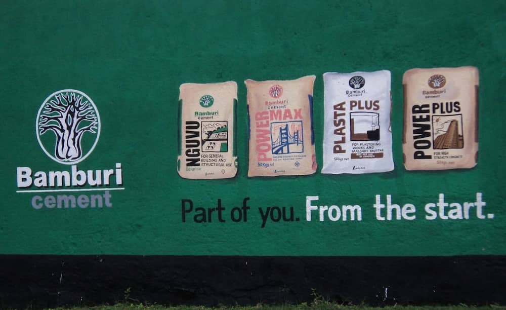 Biggest companies in Kenya 10 biggest companies in Kenya List of biggest companies in Kenya The biggest companies in Kenya
