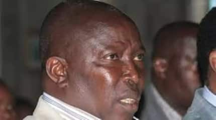 Swarm of bees attack Jubilee MP and mourners at a funeral service in Laikipia