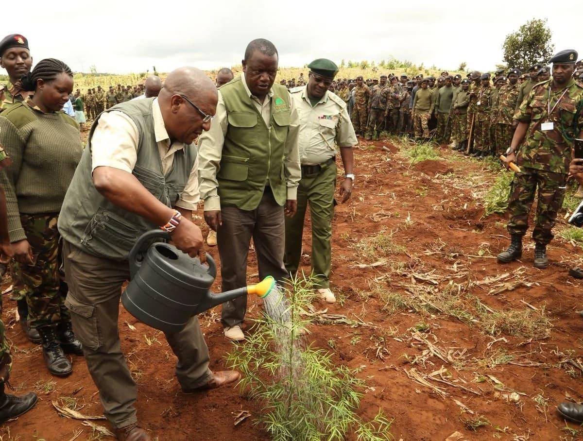 KDF yaungana na wananchi katika kurejesha misitu kwa kupanda miti milioni 3