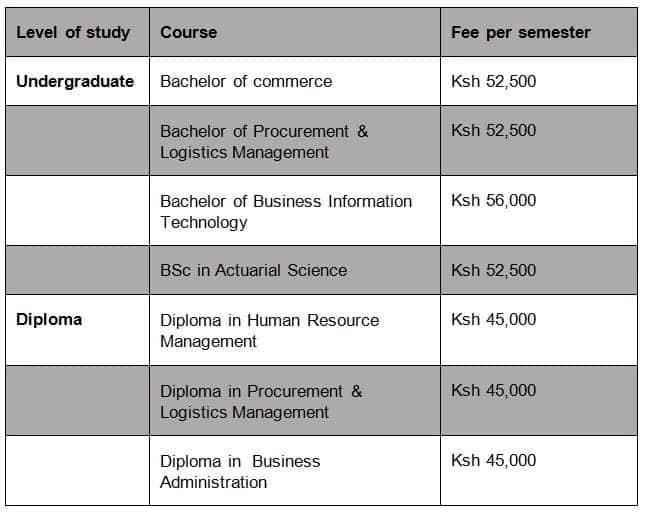 Multimedia University of Kenya fee structure 2019