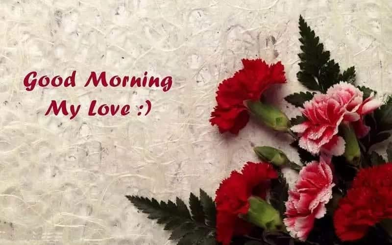 Special good morning love messages Cute good morning love messages Good morning love messages for your crush Images of good morning love messages Good morning love messages 2018