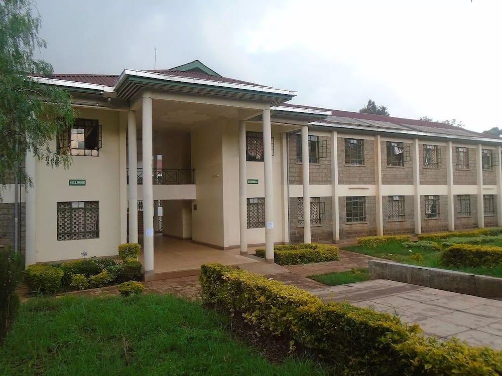 Alliance High School nairobi