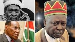 Are these Kenya's wealthiest political families?