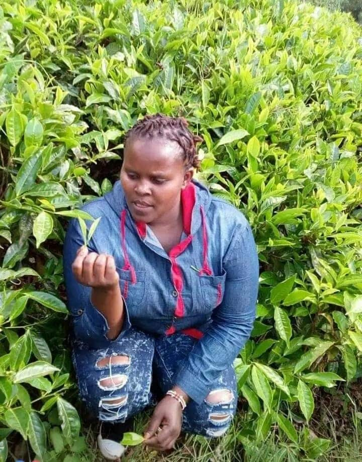 Murang'a Barmaid allegedly hacked to death by lover in mysterious circumstances