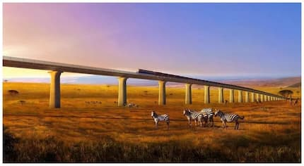 Excitement creeps in as fascinating Nairobi-Naivasha SGR line takes shape