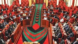 Auditor General Unearths Mileage Fraud in Parliament, Discloses 3 MPs Received KSh 16m in a Day