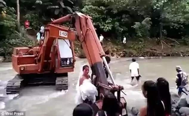 Digger to the rescue. Photo: Viral Press