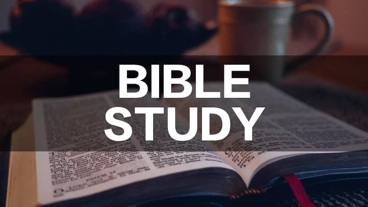 How to study the Bible effectively How to study the bible for beginners Bible study tools Bible study tips
