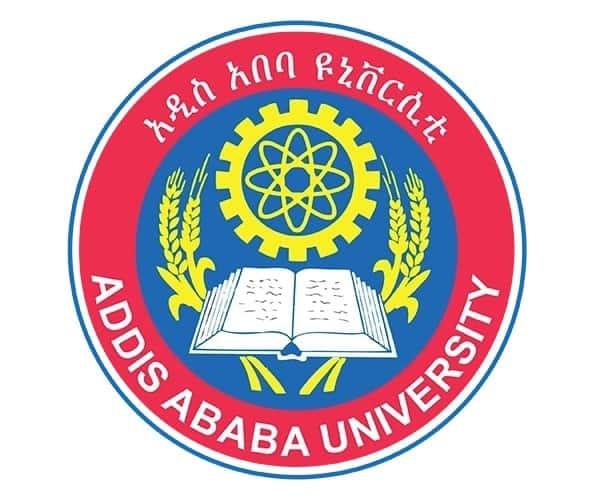 Addis Ababa university postgraduate extension program