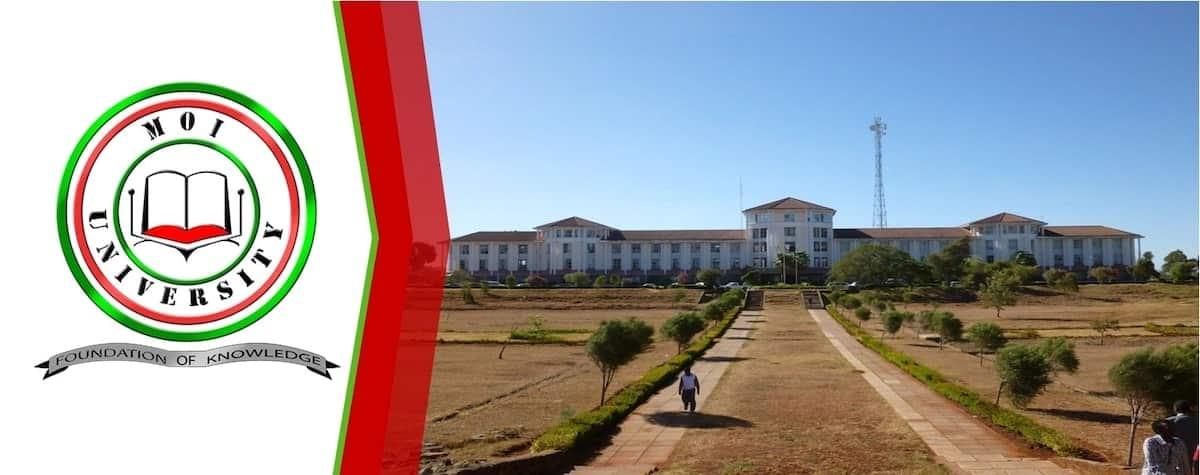 Moi university admission letters, Moi university admission letters 2018, Kuccps admission letters moi university
