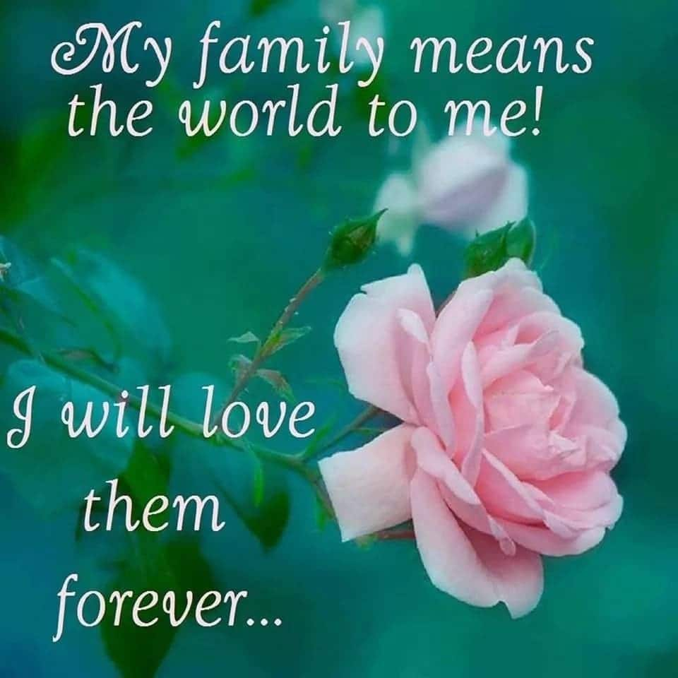 Family Quotes About Love Tuko Co Ke