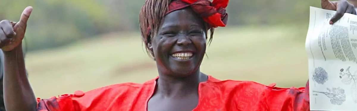 Wangari maathai quotes, Quotes wangari maathai, More wangari maathai quotes