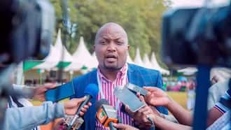 Moses Kuria: Netizens Question Absence of Gatundu South MP in Karen during UDA Meeting