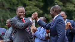 Jubilee party dismisses NASA resistance movement as harmless imagination