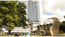 2 separate 2018 reports rank University of Nairobi best locally, in top 3 regionally
