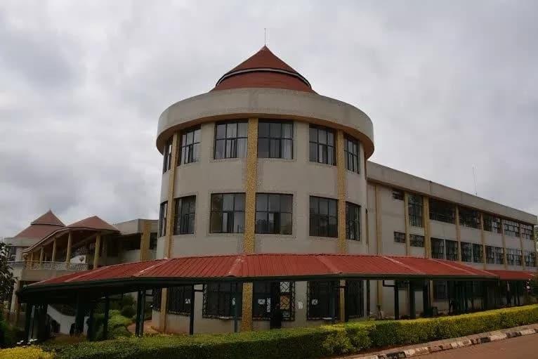 Dedan Kimathi University Fee Structure