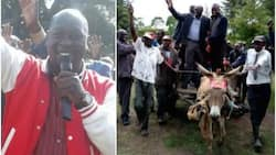 Uhuru's point man causes a stir after campaigning on a donkey cart