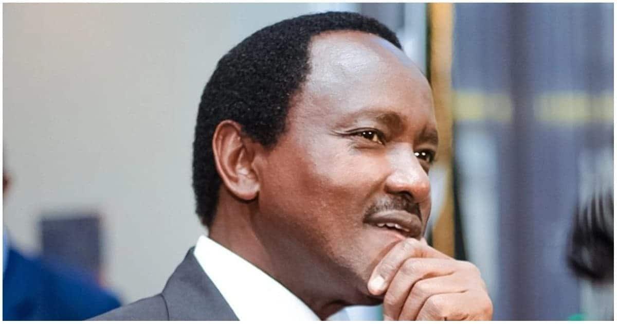 Mwandani wa Kalonzo apendekeza serikali ya kitaifa baada ya Wiper kuungana na Jubilee, ODM