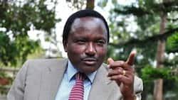 Chama cha Kalonzo Musyoka, Wiper, chashutumu wimbo 'Ikamba' unaowadhalilisha Wakamba