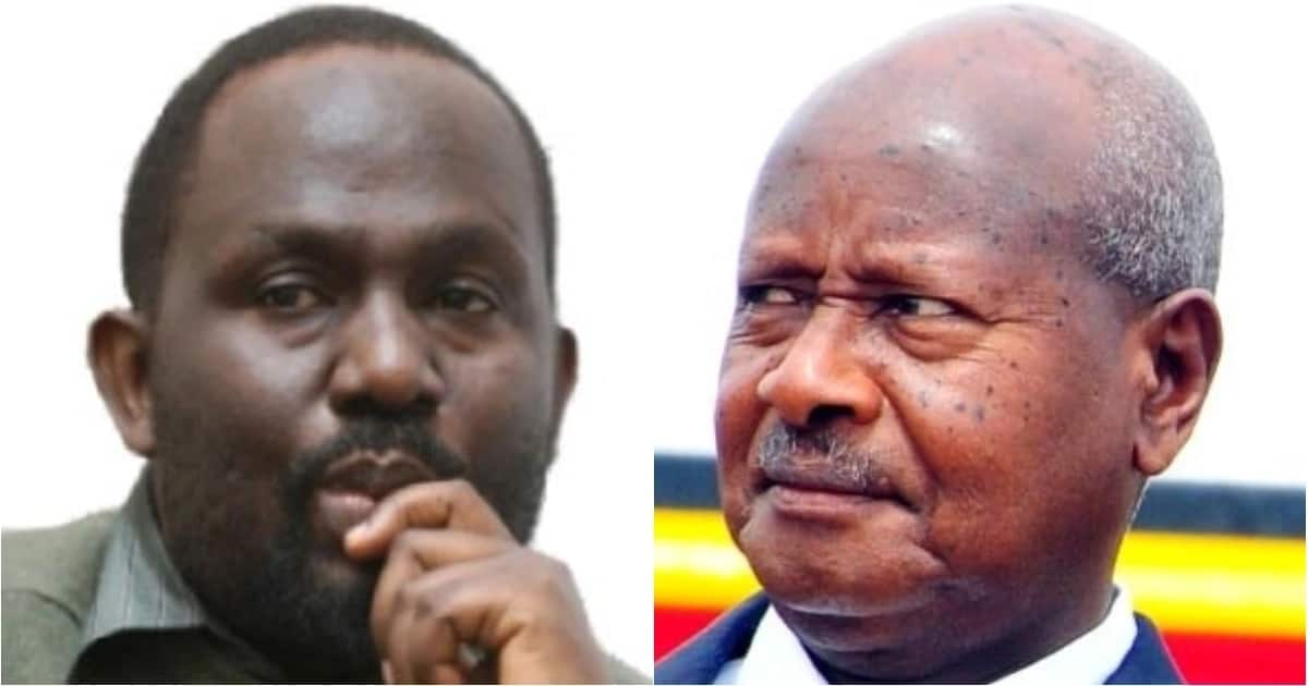 Museveni's brother accused of grabbing wetlands along shores of Lake Victoria