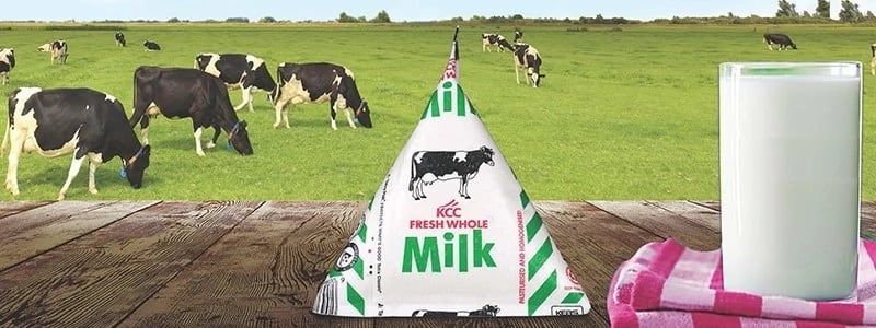 Dairy farming in Kenya success