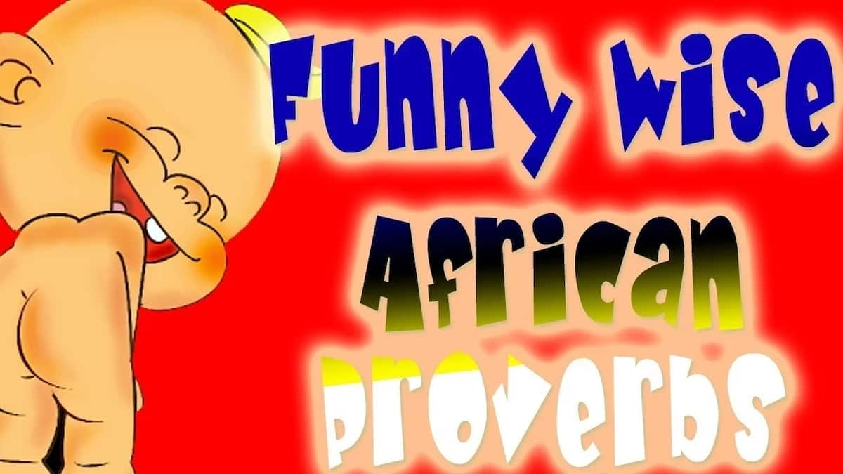Funny African proverbs