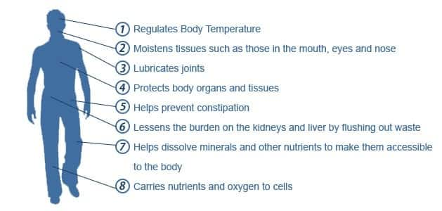 water benefits for body, daily water intake, how much water per day