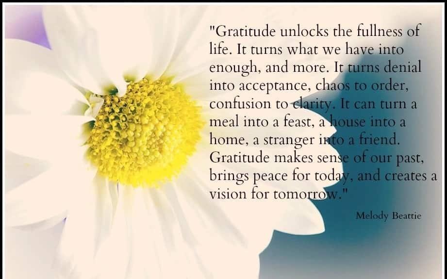 gratitude quotes, quotes on gratitude, quotes about gratitude, best gratitude quotes