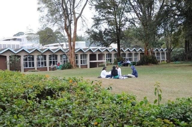 """University of nairobi school of medicine"