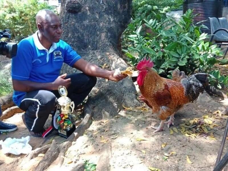 Mombasa farmer awards President Uhuru his champion chicken