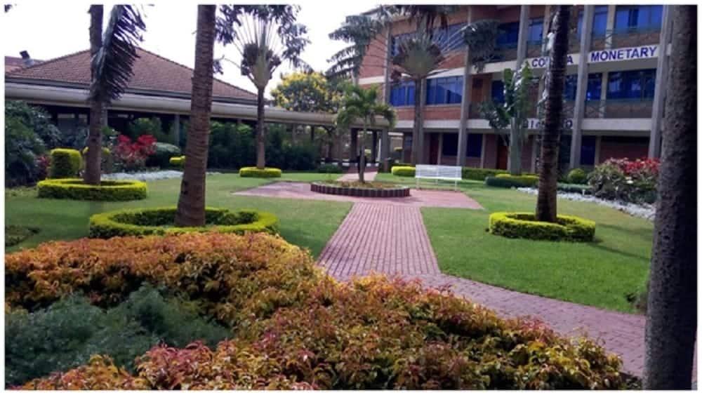 colleges in kenya