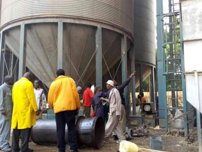 Cereals board wastes KSh 1.8 billion through poor maize storage