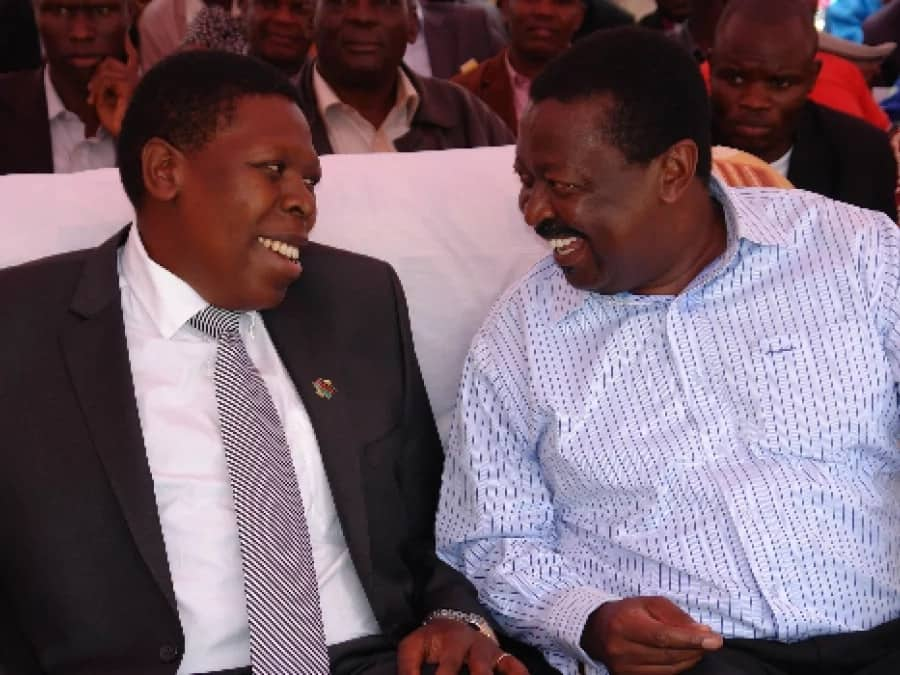It is now emerging that Musalia and Wetang'ula are weak leaders who can't be trusted - Eugene Wamalwa