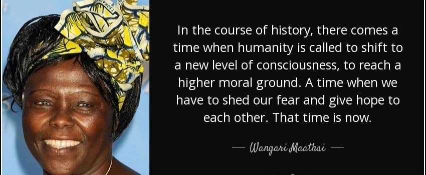 Famous wangari maathai quotes, Wangari muta maathai quotes, Wangari maathai peace quotes
