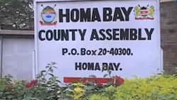 Drama as Homa Bay MCAs fight over bribery claims to pass county budget