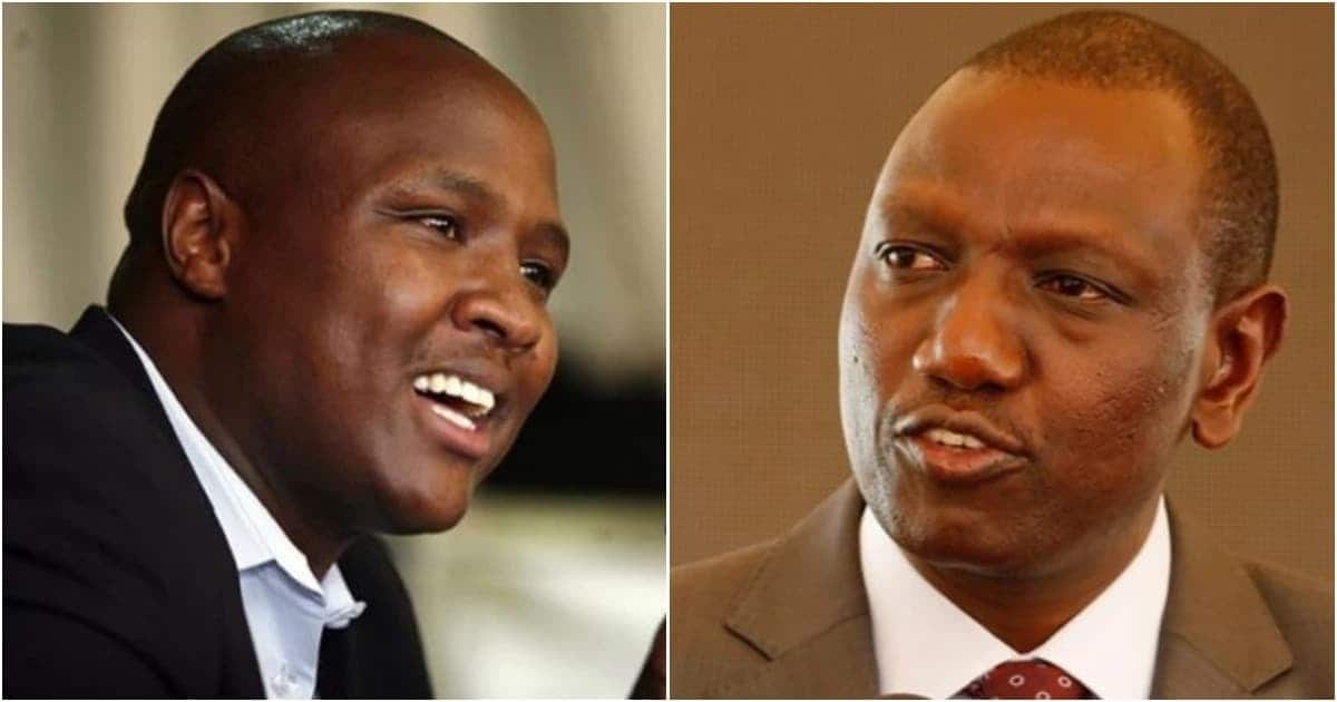 Rebel Jubilee MPs claim Ruto owns 500,000 acre farm in Congo where he imports maize from
