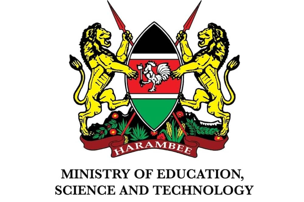 structure of the ministry of education in Kenya ministry of education kenya who is the current secretary of education ministry of education