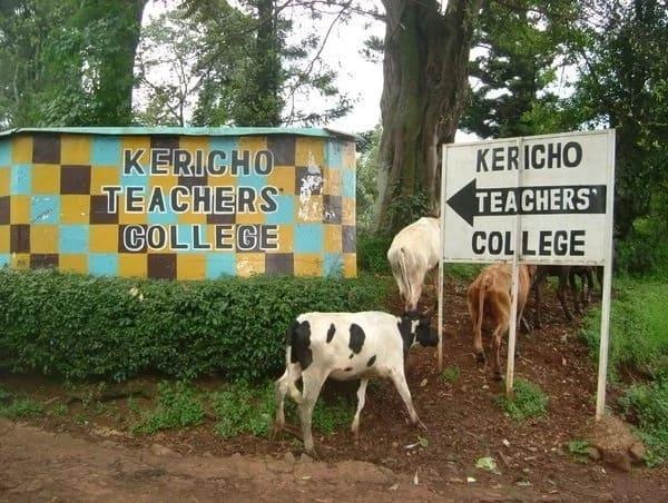P1 teachers training colleges in Kenya