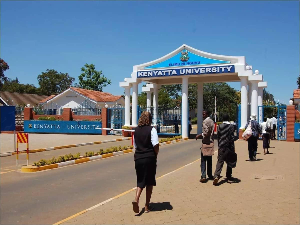 Kenyatta University admits its examination results system was hacked