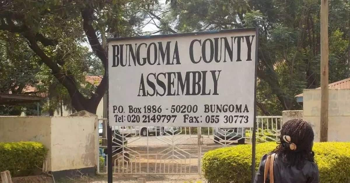 Bungoma county on spot for issuing bouncing cheques to bright but needy students joining form one
