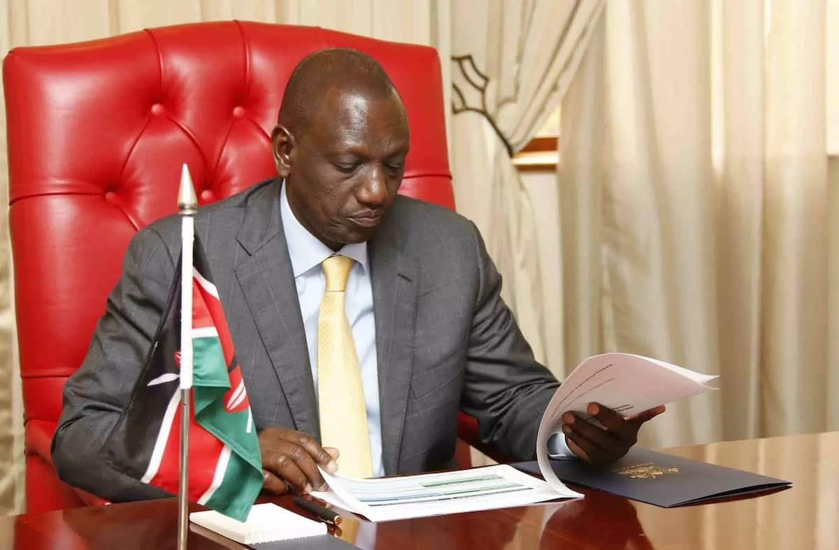 Two MPs risk loosing jobs for helping Ruto campaign for 2022 polls