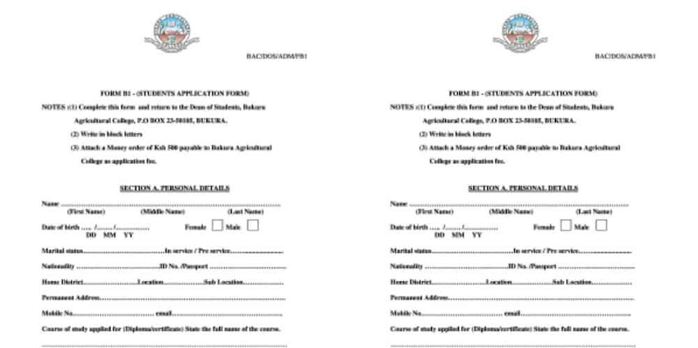 Certificate courses at bukura agricultural college Diploma courses at bukura agricultural college Bukura agricultural college admission