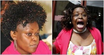 Big 4 Agenda ni kazi bure, ni mafunzo kuhusu jinsi ya kuiba – Millie Odhiambo