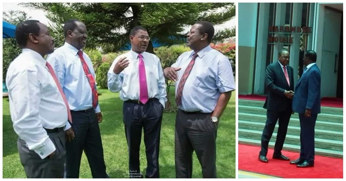 MPs from Nyanza region support Uhuru-Raila pact, urge Kenyans to rally behind the two leaders