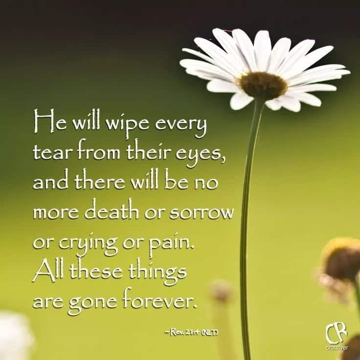 Bible verses about death funeral List of bible verses about death Bible verses about death and burial