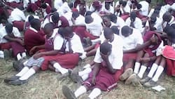 Govt has good news for 2017 KCSE candidates who scored C+ of 46 points and above