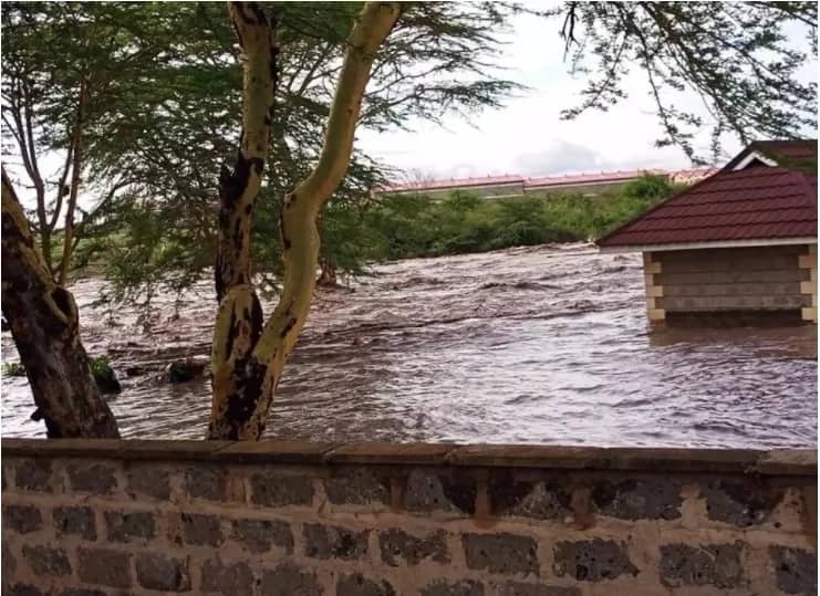 Real estate experts advice why its wise to buy land during the rainy season